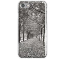 Autumn Street Scene, 1899 iPhone Case/Skin