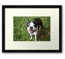 Smile Luci Framed Print