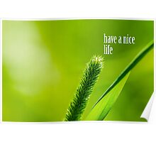 Green Grass And Sun - Have a nice life Poster
