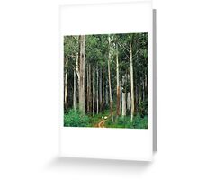 Mountain Ash Forest Greeting Card