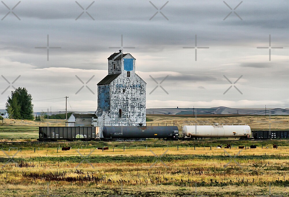 Gull Lake, Saskatchewan Grain Elevator by Vickie Emms