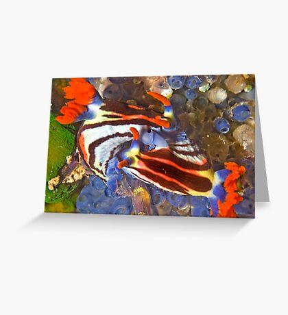 Nembrotha Nudibranch Mating Greeting Card