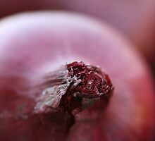 Onions by Joy Watson