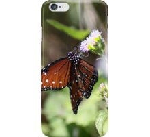 The Queen Butterfly iPhone Case/Skin