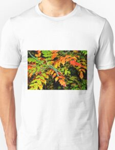 Autumn is a Painter #2, Haywards Heath, England T-Shirt