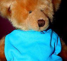 Teddy Dressed in Blue by Evita