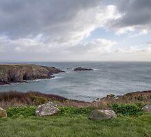 Sea View, Pembrokeshire by Janet Jenkins