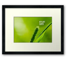 Green Grass And Sun - My planet Earth Framed Print
