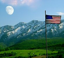 I Love The USA by digitalmidge