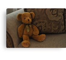Teddy Canvas Print