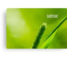 Green Grass And Sun - Earth day Canvas Print