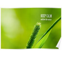 Green Grass And Sun - Keep calm and love the Nature Poster