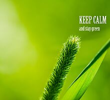 Green Grass And Sun - Keep calm and stay green by luckypixel