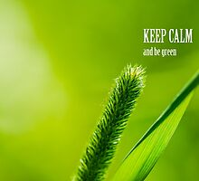 Green Grass And Sun - Keep calm and be green by luckypixel