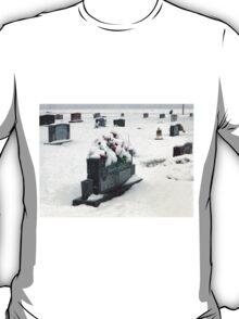 Cold Ground T-Shirt