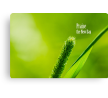 Green Grass And Sun - Praise the new day Canvas Print