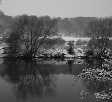 A winter reflection by kingfisher