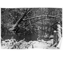 A wintry pond Poster