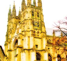 Canterbury Cathedral by Catherine Hamilton-Veal  ©