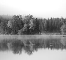 Early morning mist b/w by julie08