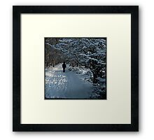 Snow Figure Framed Print