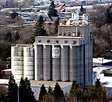Grain Millers Inc. 20-silo Mill  by Chuck Gardner
