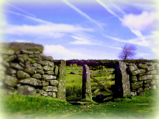 Dartmoor Gate by Charmiene Maxwell-Batten