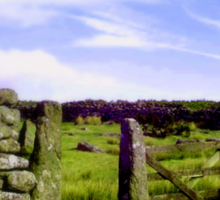 Dartmoor Gate Sticker