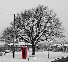 The Telephone Box by funkybunch