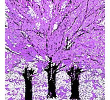 Trees are Purple Oil Painting Photographic Print
