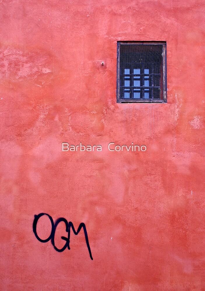 OGM by Barbara  Corvino