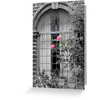 window roses Greeting Card