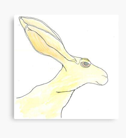 Jack Rabbit Metal Print