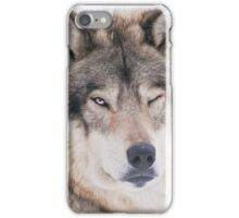 ..the wink of a wolf..... iPhone Case/Skin