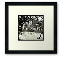 Snow Arch Framed Print