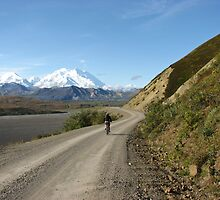 Mountain Biking Near Denali by MichaelWilliams