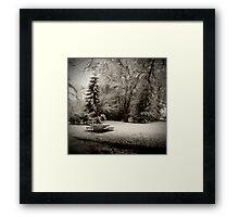Cold Park Framed Print