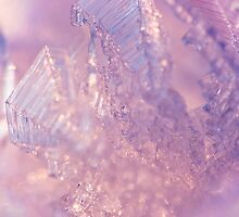 Ice crystals by Ashley Jansson