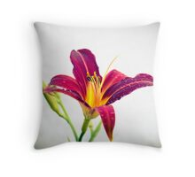 A Smile from Nature Throw Pillow