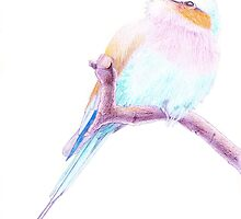 Lilac Breasted Roller Bird by Vicky Pratt