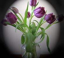 Tulips by MichelleR