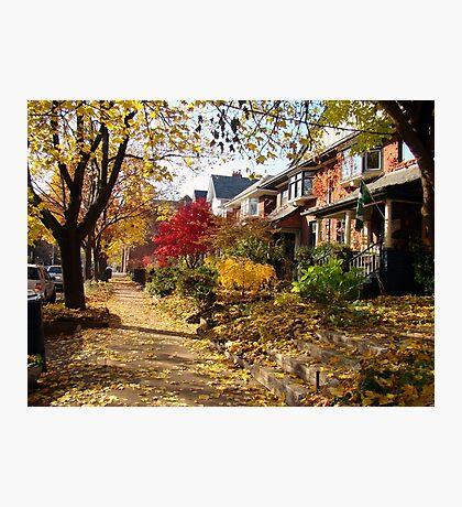 Urban Autumn Colorful Scene Photographic Print