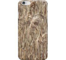 Abstract image of dried reeds iPhone Case/Skin