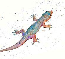 First gecko by ♥⊱ B. Randi Bailey