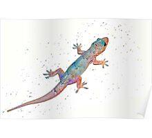 First gecko Poster