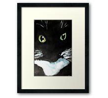 Tuxedo Kitty Framed Print