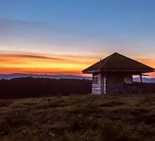 Springbrook Sunset by Ann Pinnock