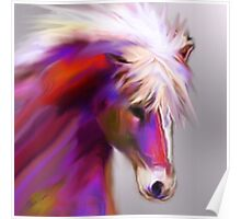 Horse of color Poster