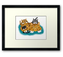 Three Kittens Pile on Momma Framed Print