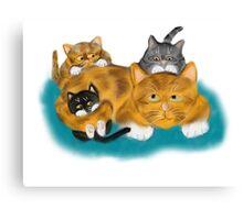 Three Kittens Pile on Momma Canvas Print